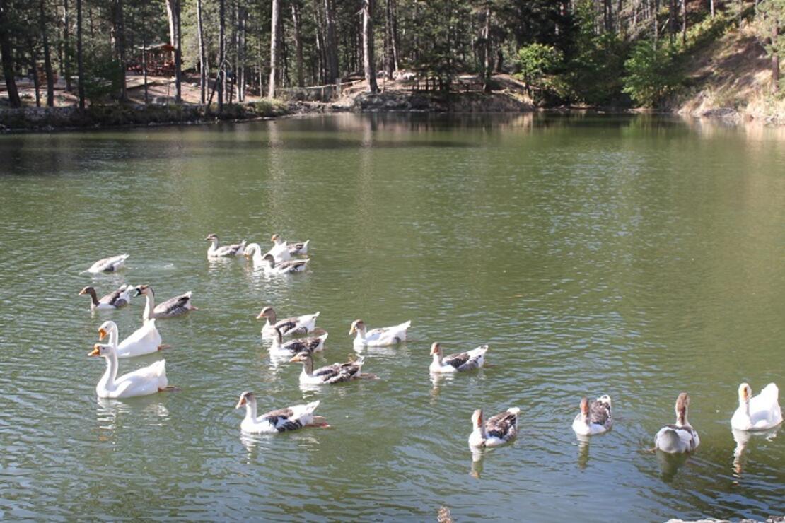 Kastamonu'da 'Dipsizgöl Tabiat Parkı'na 30 milyon TL'lik yatırım